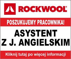 rockwool1810