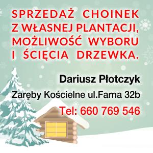 Choinki - PŁOTCZYK